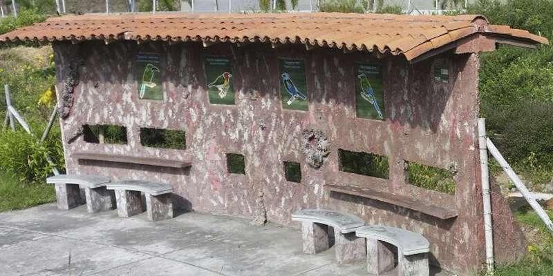 Observatorio de aves en Pereira